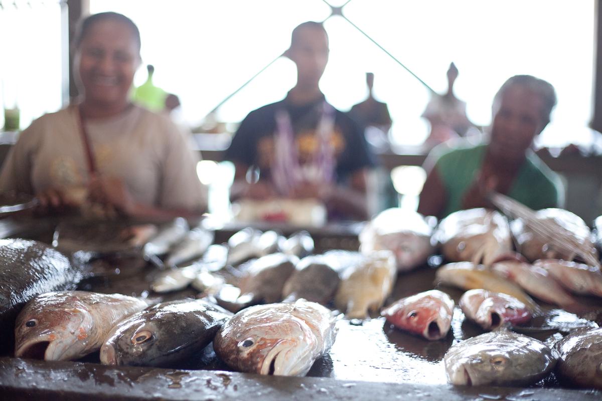 Koki fish market