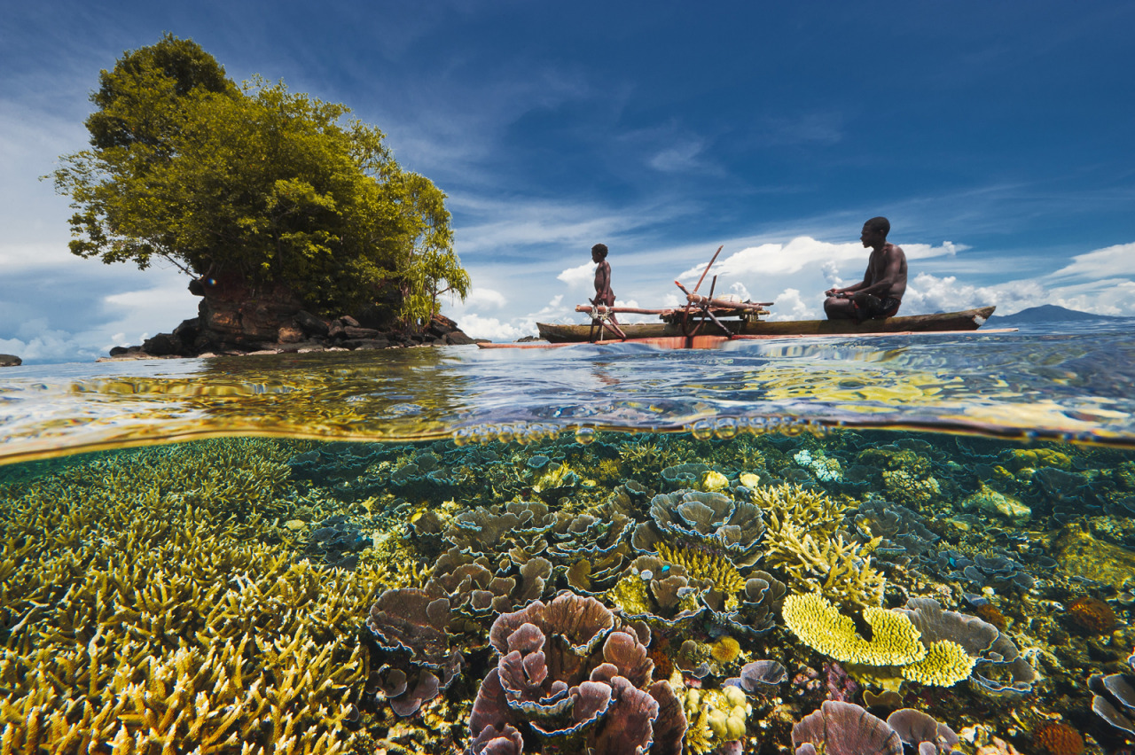 Kimbe Bay by David Doubilet, National Geographic